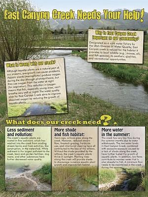 Flyer: East Canyon Creek Needs Your Help!