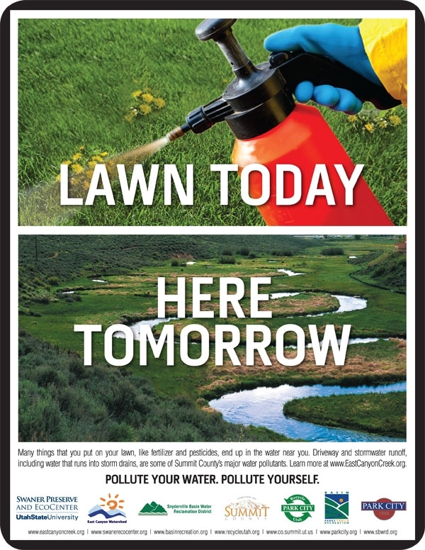 Flyer: Residential Stormwater